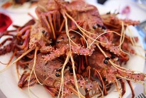 Rottnest Island: Seafood Banquet Cruise