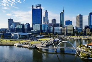 Swan River: Round-Trip Cruise from Perth or Fremantle