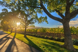 Swan Valley Boutique Winery Tour: Gourmet Food, Lunch & Wine