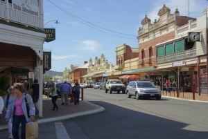 Wave Rock, York, Wildflowers and Cultural Tour from Perth