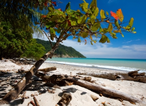 Cabo Blanco Beach