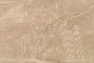 From Nazca: Nazca Lines Flight