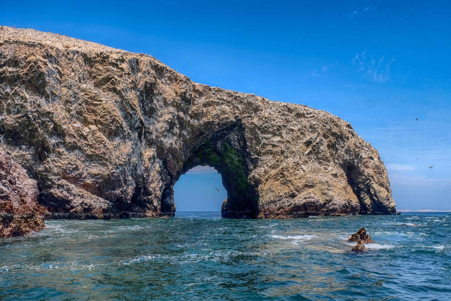 Best tours from Paracas, Peru