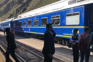 Machu Picchu: Expedition Train Round-trip Ticket