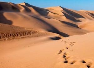 Paracas Dunes