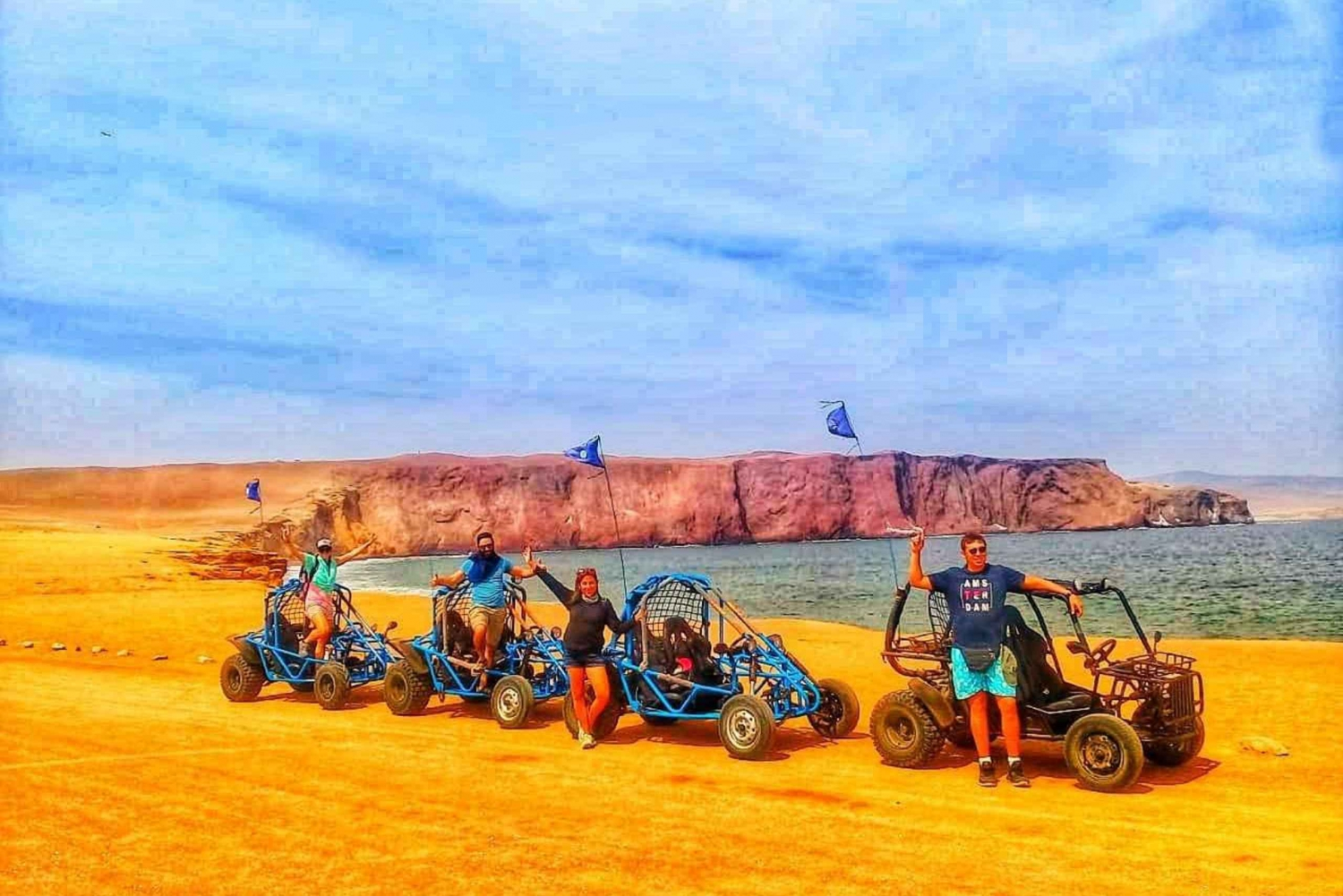 Best tours from Paracas