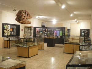 Regional Museum of Ica Adolfo Bermúdez Jenkins
