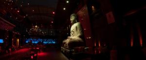Sukha Buddha Lounge