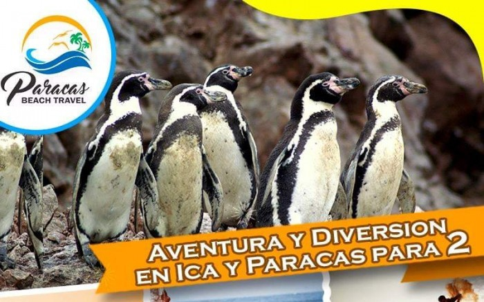 Adventure and fun in Ica and Paracas
