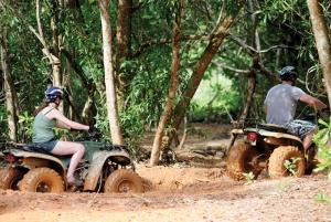 ATV Mangrove Jungle & Hidden Beach Tour