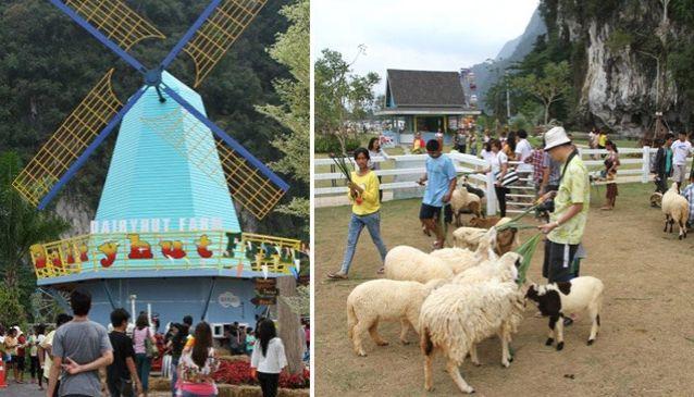 Dairy Hut Farm