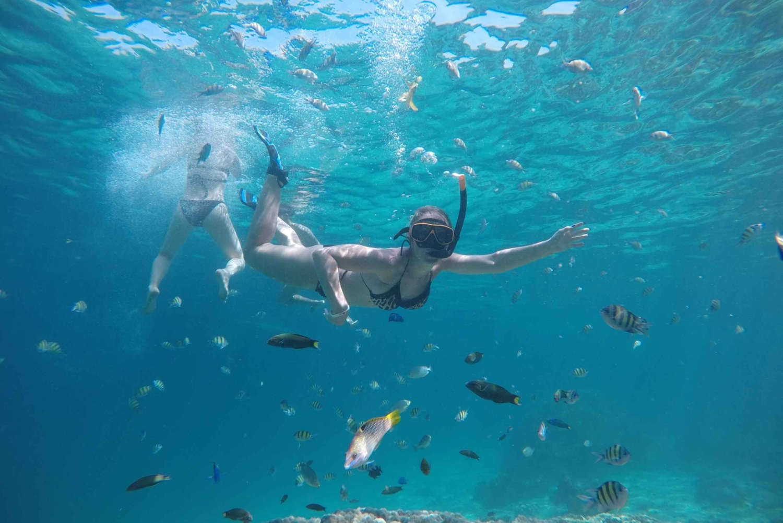 From Phi Phi & Khai Islands Snorkeling by Speedboat