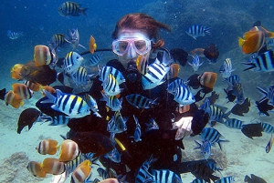 From Phuket: 3-Day PADI Open Water Diver Certification