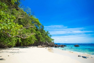 From Phuket: Snorkeling & Dolphin Spotting in Maiton Island