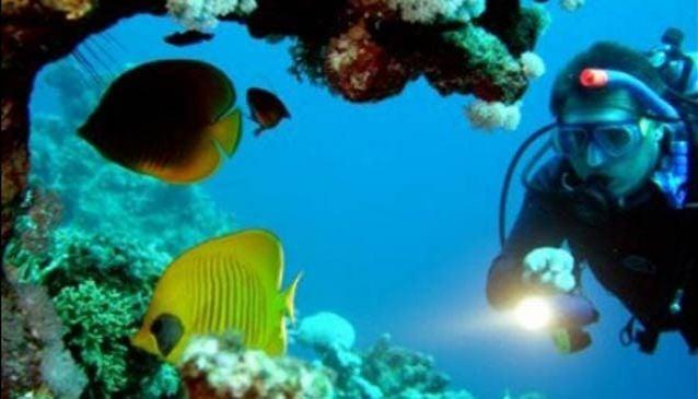 Manta Point Dive Center