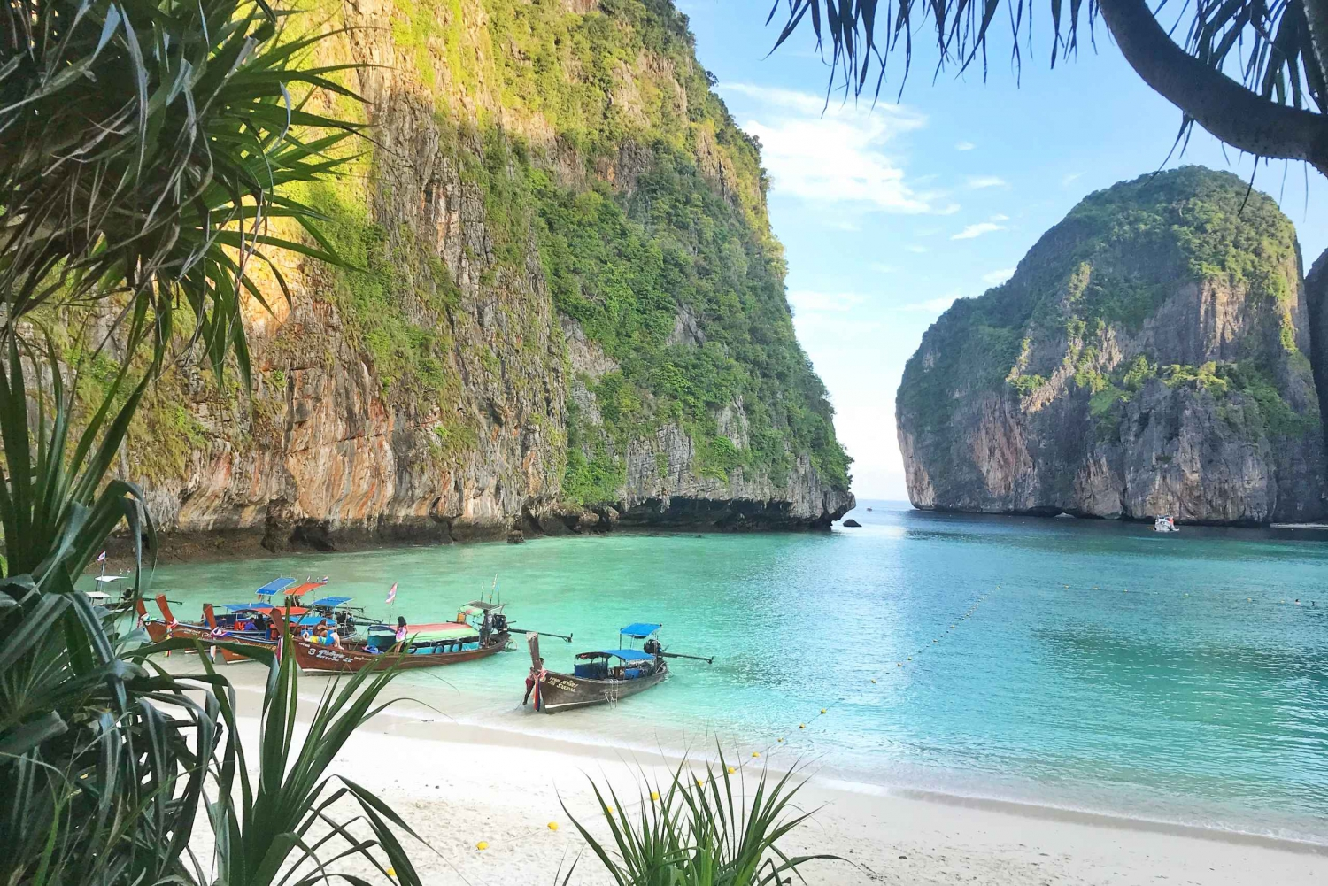 Phi Phi Islands: Early Bird Tour From Phuket and Khao Lak