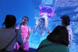 Phuket: Aquaria Phuket & Trick Eye Museum Tickets