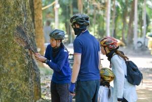 Phuket: ATV Mangrove Jungle & Hidden Beach Tour