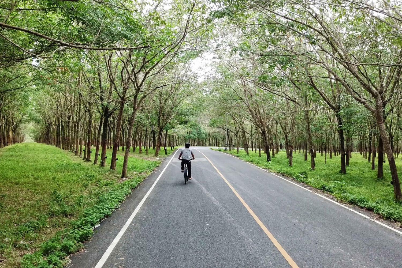 Phuket Countryside Bike and Kayak Tour