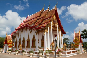 Phuket: Private Car or Minibus Rental with Driver