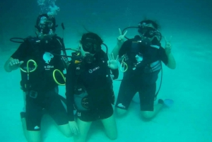 Scuba Diving and Snorkeling Boat Tour