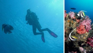 SUB AQUA Dive Center