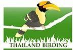 Thailand Birding