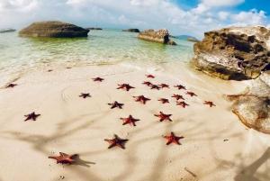 Kayaking and Starfish Beach Tour