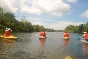 Phu Quoc: Kayaking and Starfish Beach Tour