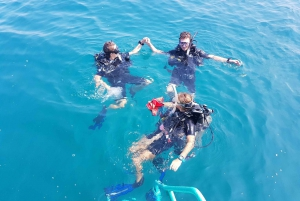 Scuba Diving: In the South