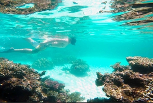 South Island Snorkeling and Fishing Trip