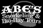 Abe's Snorkeling and Bio Bay Tours