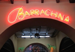 Barrachina Neon