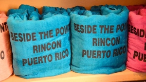 Beside the Pointe Beach Towels