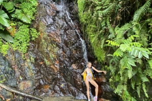 Carolina: Full-Day El Yunque Rainforest & Waterslide Tour