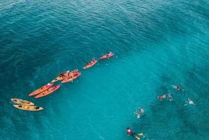 Ceiba, PR: Culebra Kayak & Snorkel Tour with Ferry Tickets