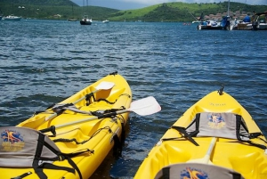 Club Seabourne Kayaks