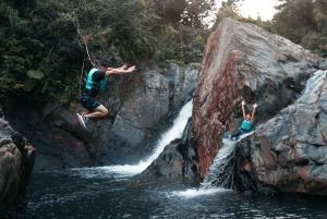 El Yunque Rainforest & Waterfalls Half-Day Tour
