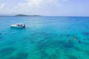 Fajardo: All Levels Snorkeling Tour to Icacos Island