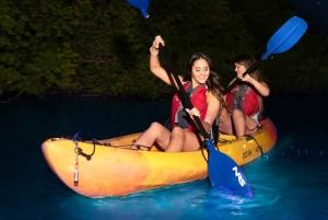 Fajardo: Bio Bay Kayak Tour