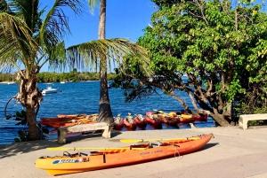 Fajardo: Bioluminescent Lagoon Kayak or Full Moon Kayak Tour