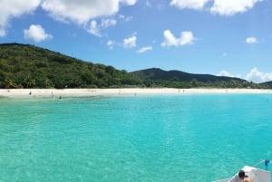 From Fajardo: Full-Day Culebra Islands Catamaran Tour