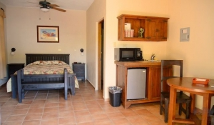 Las Palmas King Bedroom