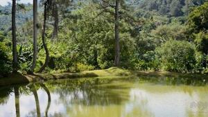 Lake at Hacienda San Pedro