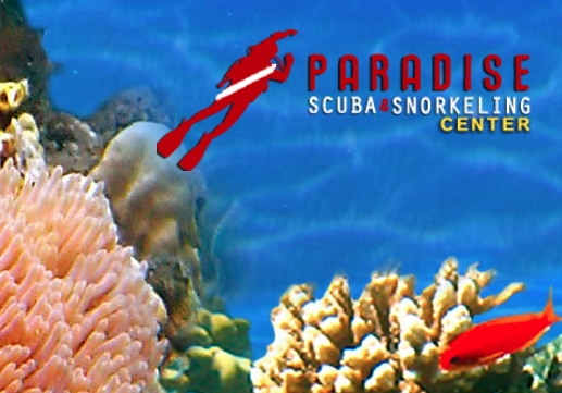 Paradise Scuba and Snorkeling