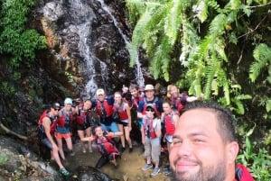 Puerto Rico: El Yunque Rainforest & Waterfalls Half-Day Tour