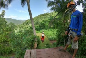 Puerto Rico: Yunque Rainforest Zip-Lining Adventure