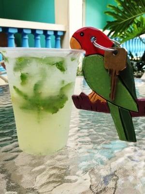 Lazy Parrot Mojito