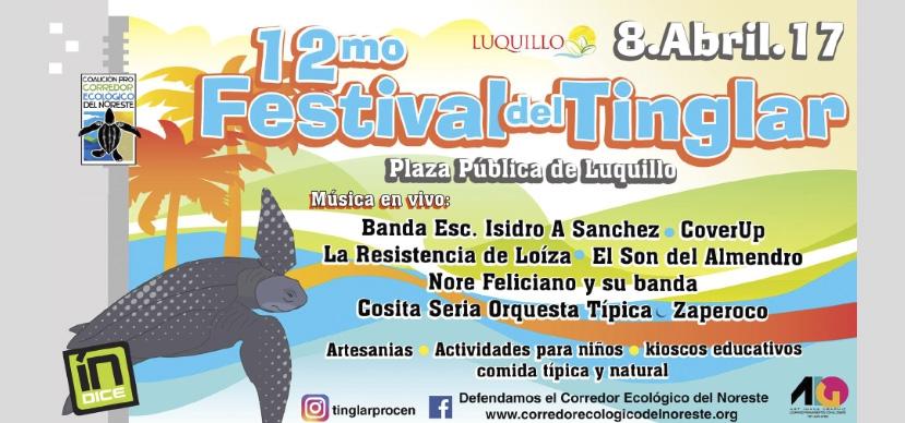 12mo Festival del Tinglar