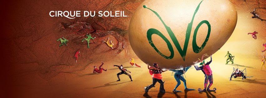 Cirque Du Soleil 'OVO'